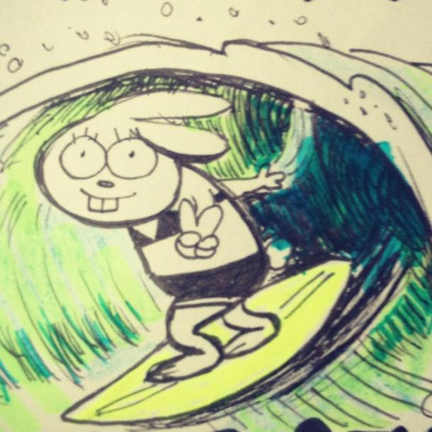 surfing sarah steenland